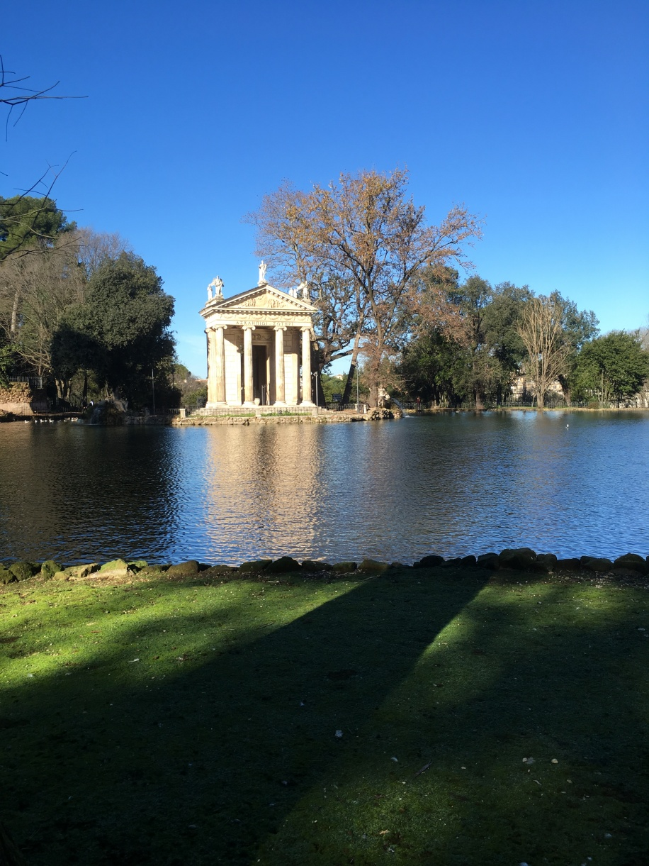 The pond in the park