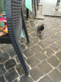 This pigeon stalked us all lunch