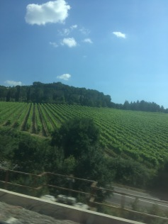 Those vineyards of Tuscany...